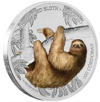 Wildlife of Nicaragua Sloth- Photo Courtesy of Coin Update-front