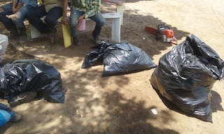 Gran Pacifica Clean Up San Diego River, results, several full trash bags.jpg
