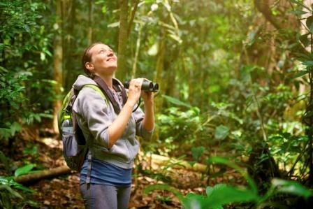 Hiking_in_the_Rainforest___iStock_000072722405_Large.jpg