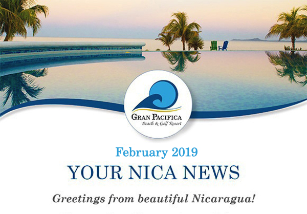 Gp Newsletter February 2019