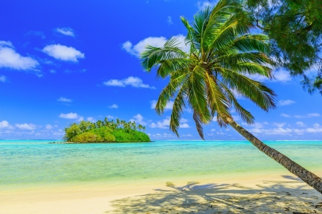 Tropical_Paradise__iStock_000084270125_Small.jpg